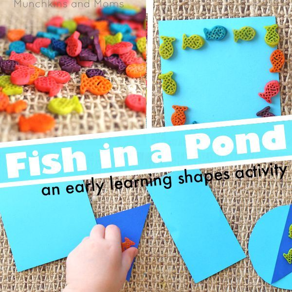 289 best shapes images on pinterest shape activities for Koi pond shapes