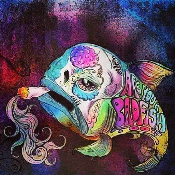 Are you a badfish too shit my mom hates pinterest for Is fish bad for you