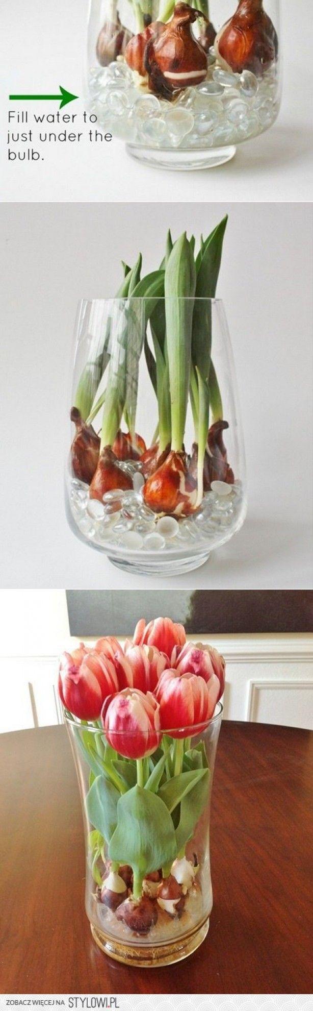 Mooie tulpen en makkelijk !!! Kan met alle kleine bolletjes en ook met knikkers en/of gelparels.