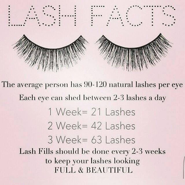 "32 Likes, 4 Comments - A Touch Of Color Makeup & Hair (@atouchofcolormakeup) on Instagram: ""Lash Facts!  Its important to keep up on your lash fills to keep your own lashes healthy and…"""