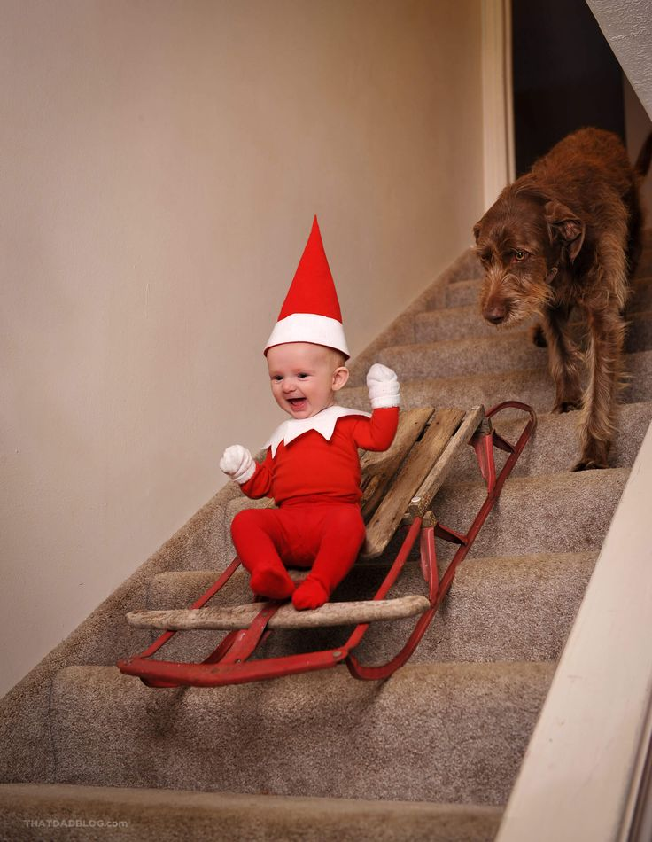 REAL LIFE ELF ON THE SHELF via http://thatdadblog.com/the-elf-that-came-to-live-with-us/
