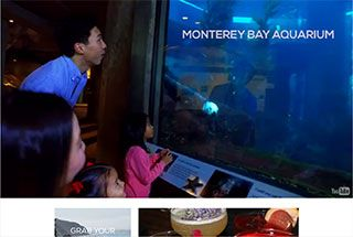 Great introductory video that plays in the background under the taglines. Nice pop-out sidebar with current weather temperatures and beautiful images of the great locations in Monterey.