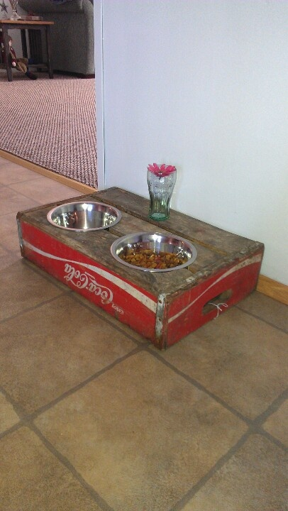 Dog dish made from old Coke crate.