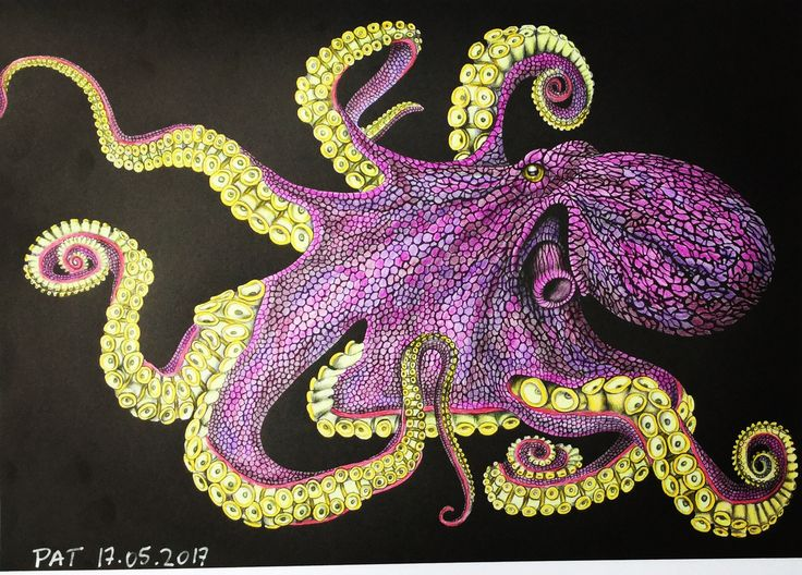 Find This Pin And More On Intricate Ink Animals In Detail By Patricia Daniel