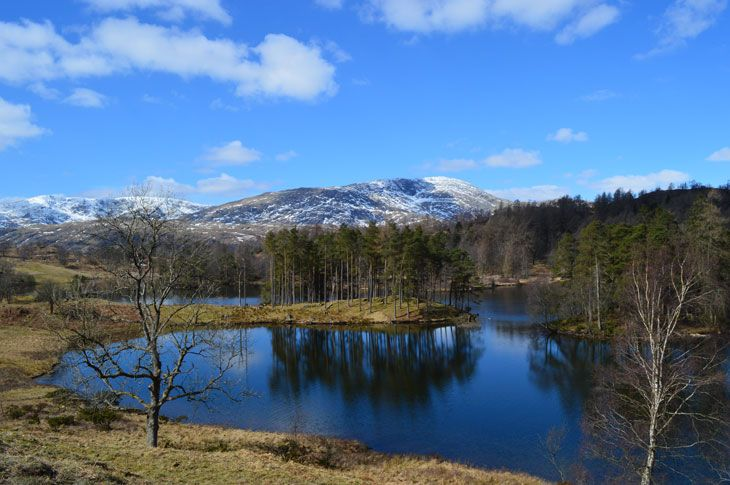 Tarn Hows – An Icon Of The Lakes