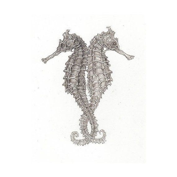 SALE Seahorse Courtship Print by TheNeptuneCollective on Etsy, $10.00