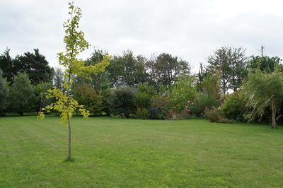 Jardin des Chambres d'hôtes à vendre près de Barfleur dans la Manche