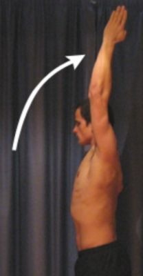 Shoulder Stretches - Flexion in Standing