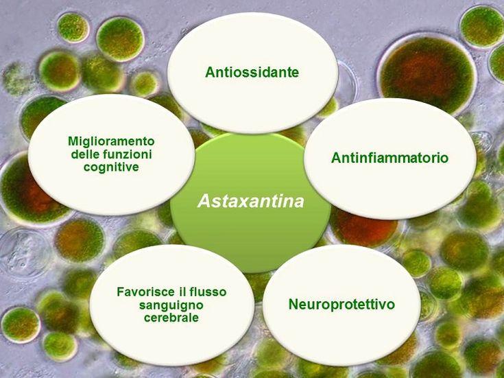 Astaxantina: rimedio naturale per la memoria  #integratore #illumina #cristalfarma