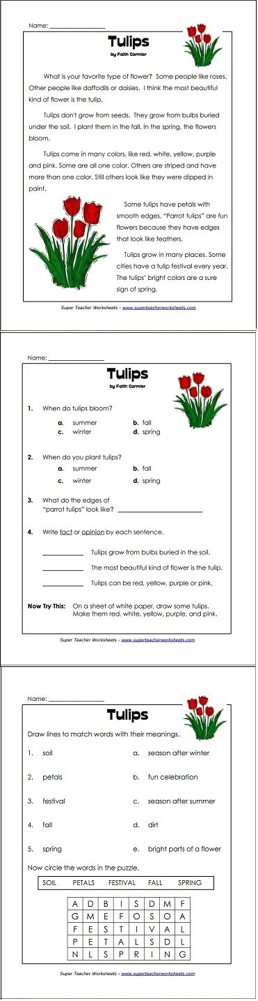 Worksheets Where Do Teachers Get Their Worksheets 34 best images about reading and writing super teacher a perfect comprehension worksheet for springtime