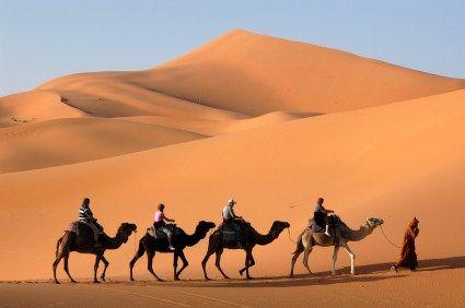 Camel trekking through the Sahara desert in #Morocco #Adventure  www.otgexcursions.com