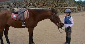 http://ift.tt/2iYgK8D http://ift.tt/2iYgzdA  La equitación es un deporte que permite el relacionamiento y respeto entre el ser humano y el animal por lo que contemplar este deporte conlleva a experiencias enriquecedoras con auténticas disciplinas a base de constancia y entrenamiento. Pero qué beneficios aporta la equitación a los niños?  Este deporte al proporcionar diferentes estímulos ayuda en el desarrollo de los niños en sus primeros años de vida debido a que se crean conexiones que les…