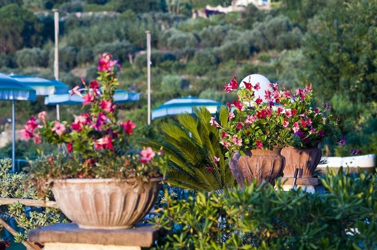The Poggio Gardens and views of Mount Epomeo