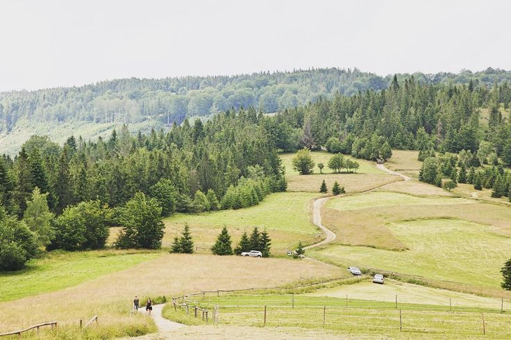 . . . #halaboracza #żabnica #beskidy #polskiegory #igerspoland #travelcommunity #timeoutsociety #teamwanderlust #welivetoexplore #wearetravelgirls #wonderful_places #beautifuldestinations #thevisualpassport #exceptional_pictures #travel_drops