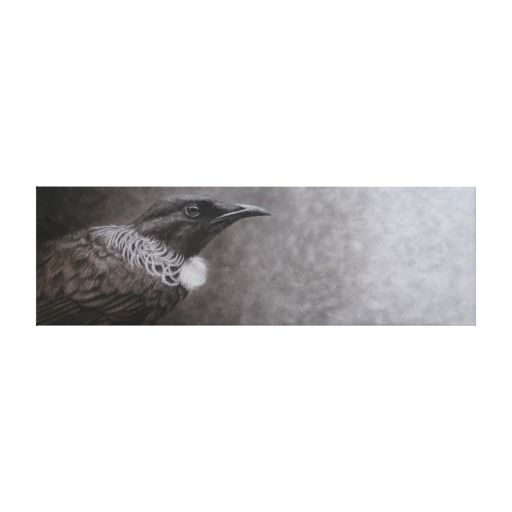 New Zealand Tui Gallery Wrapped Canvas