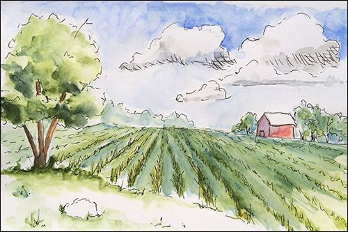 http://emptyeasel.com/2014/06/07/learning-how-to-draw-expressive-lines-in-pen-ink-watercolor/