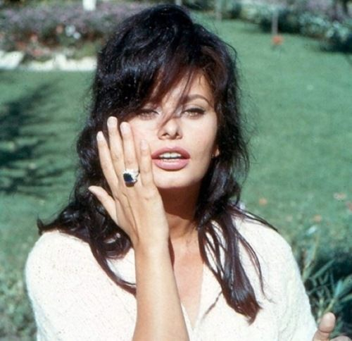 Sophia Loren - come-hither eyes, bee-stung lips, cheekbones so sharp they could give you a paper-cut, just-rolled-out-of-bed hair.  Timeless sexiness.