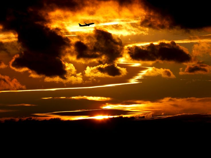 Flight into sunset by Maria Bruscha on 500px