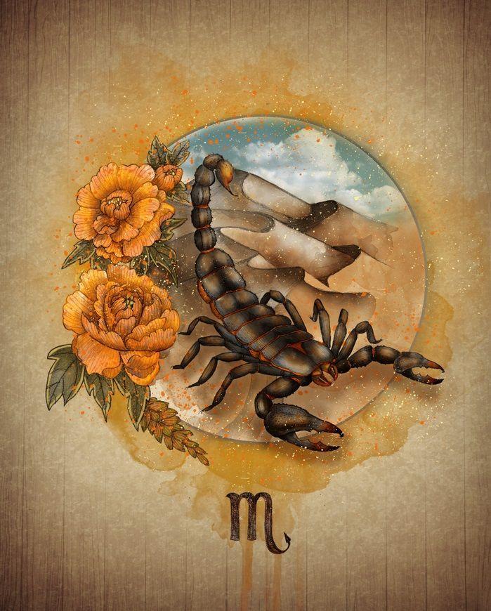окраинах дрездена красивая картинка скорпиона знака зодиака июне июле