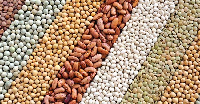 Cibi vegetariani ricchi di proteine