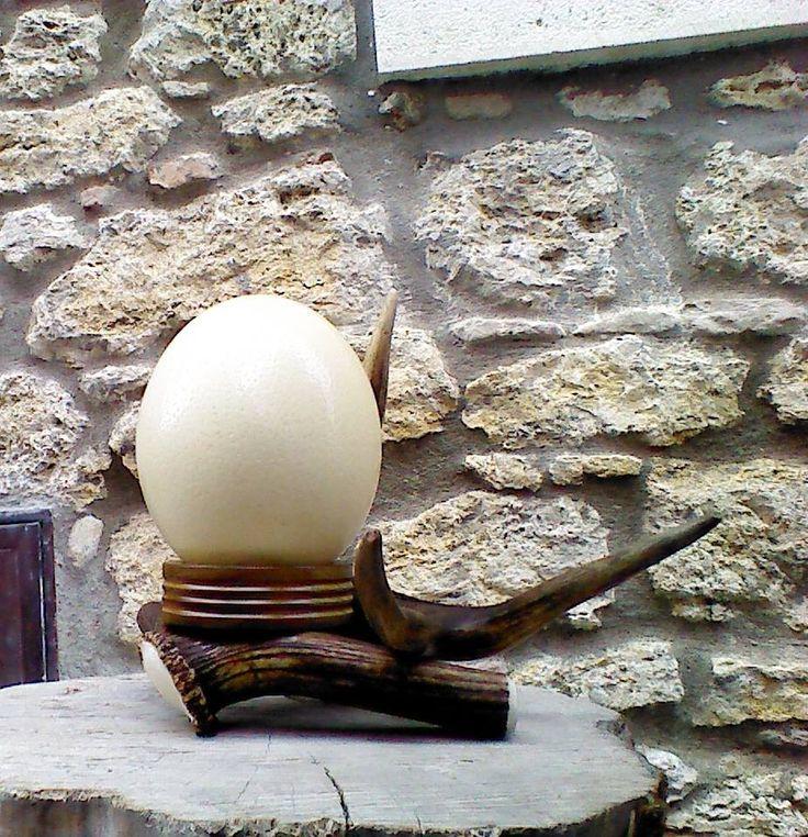 Azienda Agricola L' Albero degli Struzzi - Gusci uova di struzzo decorati a decoupage, dipinti, intagliati