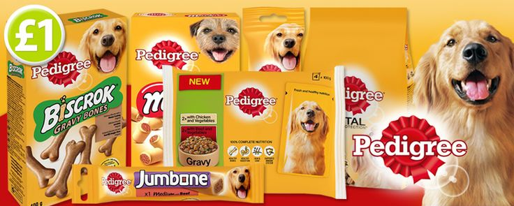 On sale now...Pedigree dog food & treats! This fabulous selection will help keep your dog healthy and full of vitality as they contain omega 3, vitamins & minerals! www.poundshop.com/pets