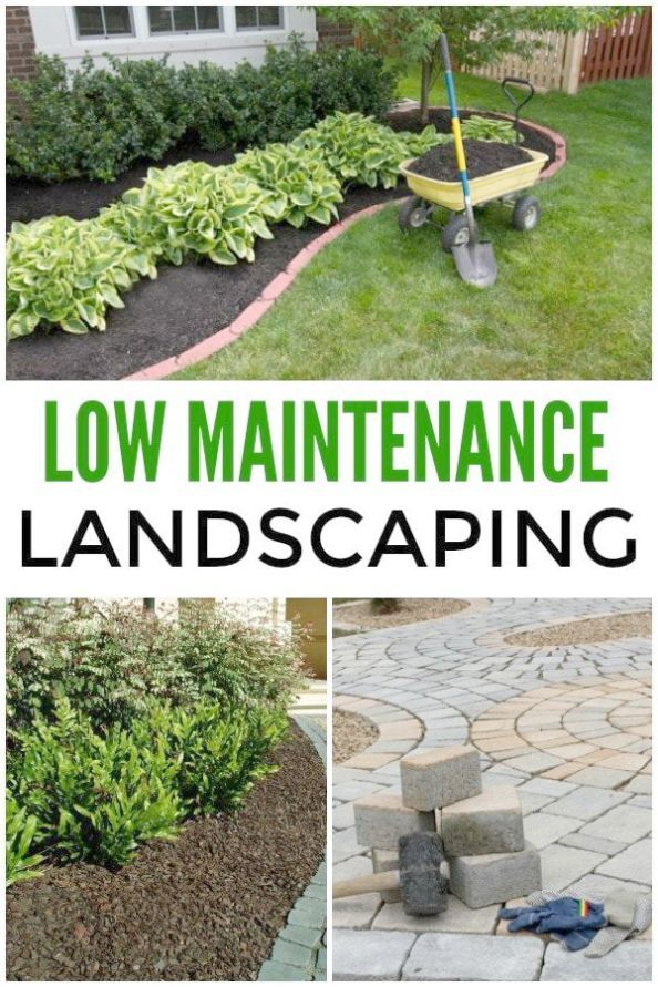 Pin On Traditional Landscape Ideas