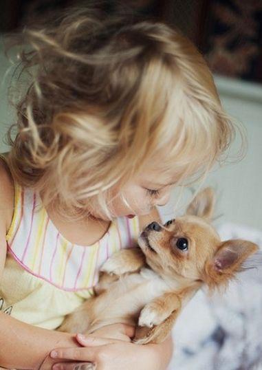 Perrito con niña #Dingonatura