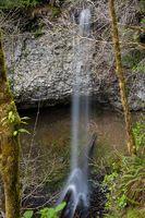 Ayers Creek Falls, Marion County, Oregon - Northwest Waterfall Survey