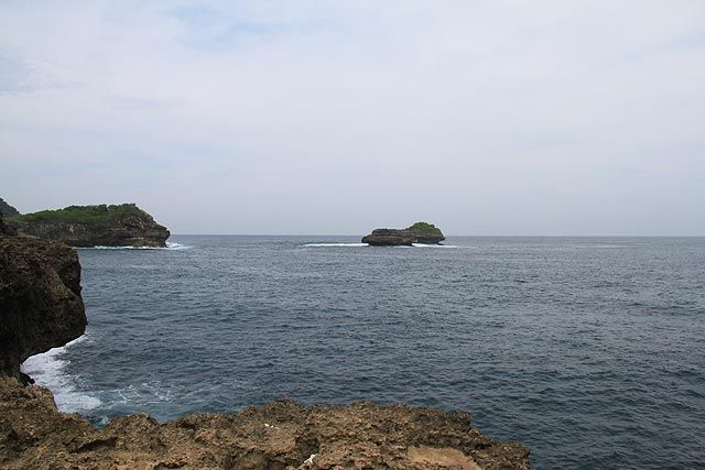 Pulau Sempu merupakan salah satu cagar alam yang dilindungi oleh pemerintah. Pulau kecil yang terletak di selatan Pulau Jawa ini berada dalam wilayah kabupaten Malang, Jawa Timur. Pulau ini terkenal dengan sebuah laguna yang bernama Segara Anakan. Jangan lupa bawalah sampah anda kembali keluar pulau.