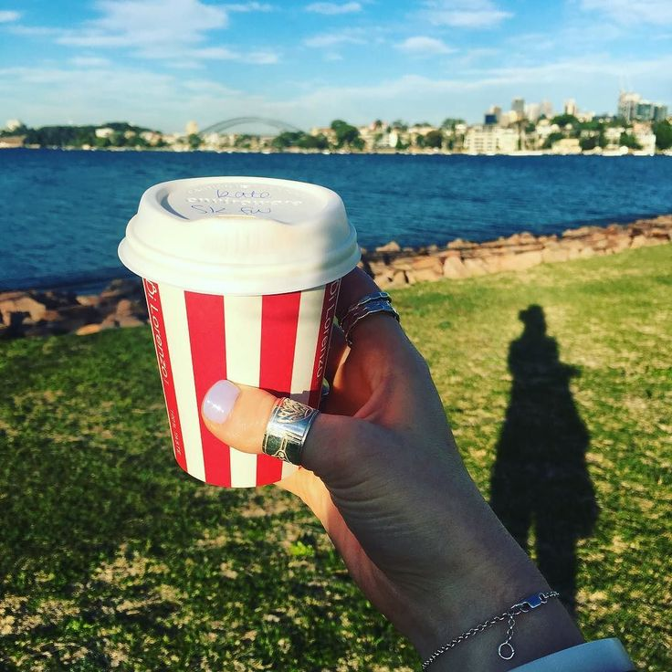 Coffee on cockatoo. My new favourite space in Sydney. #cockatooisland #sydneyharbour #sydneyharbourbridge #coffeewithaview by katemence http://ift.tt/1NRMbNv