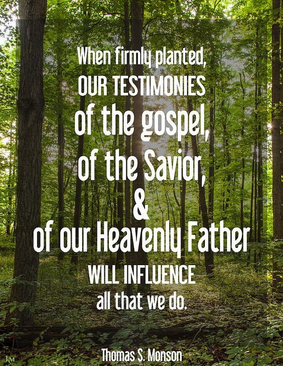 """""""We need to nurture strong testimonies by studying the scriptures and by praying and by pondering the truths of the gospel of Jesus Christ. http://facebook.com/173301249409767 When firmly planted, our testimonies of the gospel, of the Savior, and of our Heavenly Father will influence all that we do."""" From #PresMonson's http://pinterest.com/pin/24066179228814793 inspiring #LDSconf http://facebook.com/223271487682878 message http://lds.org/general-conference/2015/10/keep-the-commandments"""
