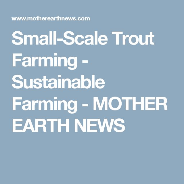Small-Scale Trout Farming - Sustainable Farming - MOTHER EARTH NEWS