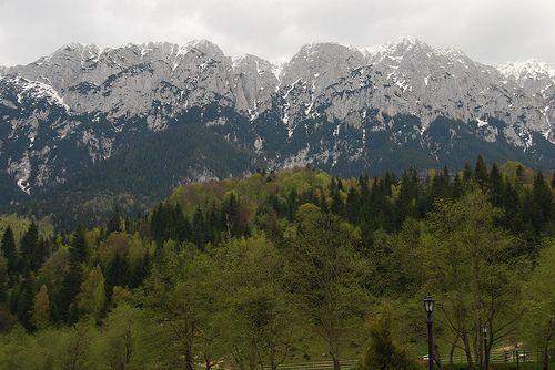 prier 2008 piatra craiului