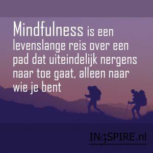 citaat – Mindfulness is een levenslange reis over een pad dat uiteindelijk nergens naar toe gaat alleen naar wie je bent