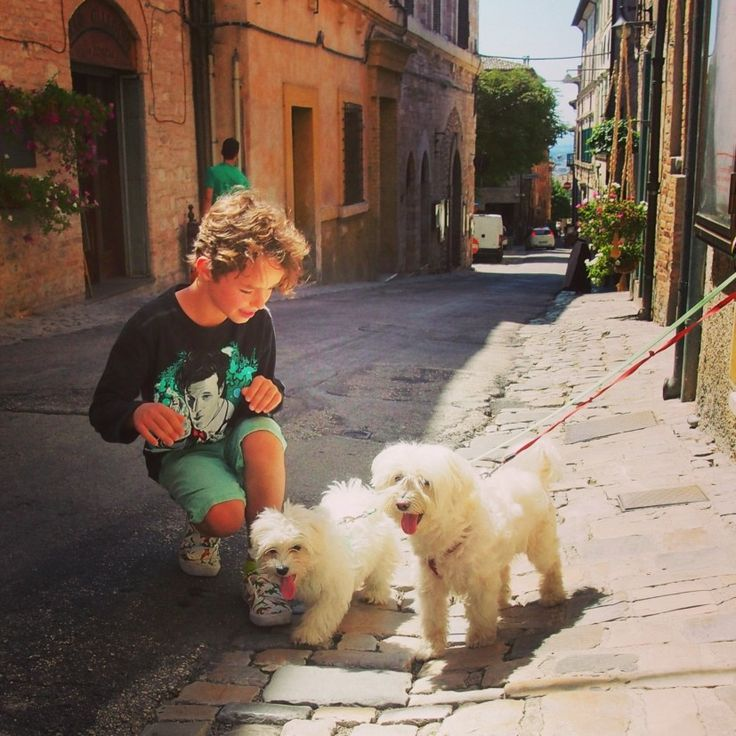 The streets of Spello Italy. And cute dogs. Umbria.