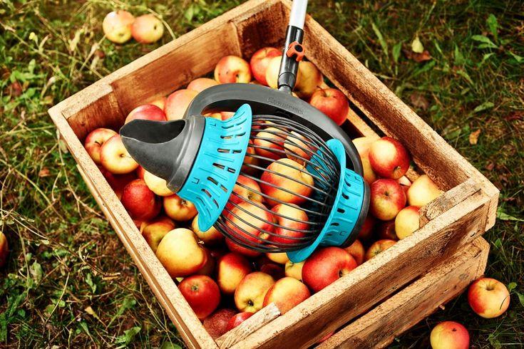Nieuw van GARDENA - fruitrapen zonder bukken