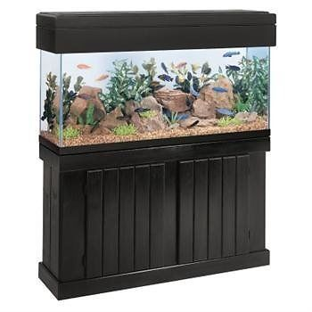 Aquariums and Tanks 20755: All Glass Aquarium Aag51020 Pine Cabinet, 20-Inch -> BUY IT NOW ONLY: $135.21 on eBay!