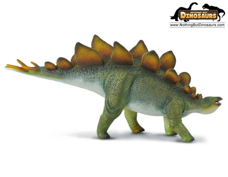 197 Best Images About Dinosaurs...Where Did They Go ?? On