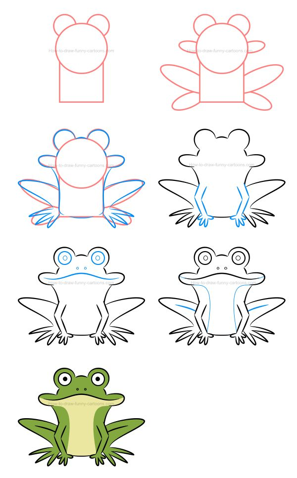 How to draw a frog and sketch various postures.