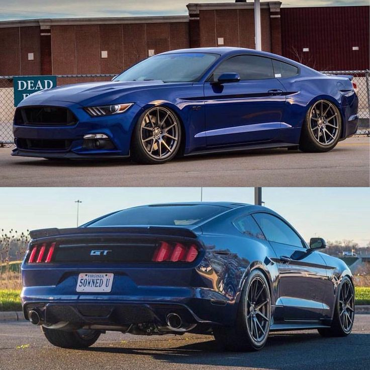 best 25 2015 mustang ideas on pinterest ford mustang gt500 mustangs and ford mustang gt. Black Bedroom Furniture Sets. Home Design Ideas