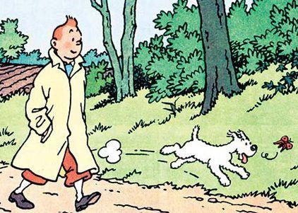 Les Adventure de Tintin .