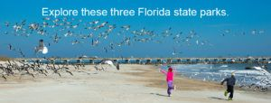 3 FLORIDA STATE PARKS YOU MUST EXPLORE BEFORE SELLING YOUR RV:Planning to sell your RV? Why not go for an adventurous trip before doing that? You can share your experience and give your clients a good reason to buy your RV.