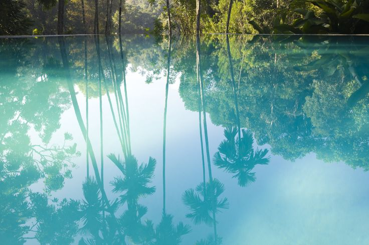 Water Reflections, Dreams, Summer Paradis, Peace, Palms Trees, Blue Lagoon, Beach, Places, Christmas Vacations