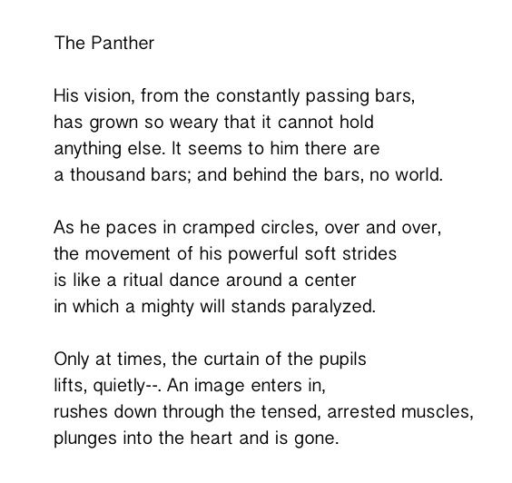 imagery techniques in poem the panther Rainbow poems examples of all types of rainbow poems  the poem(s) are below search  rainbow, flower, growth, imagery, introspection, favorite mornings.