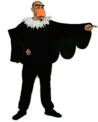 All I need is some black cloth for the wings, black construction paper for the beak and maybe a black boa for my neck and this is my raven costume.