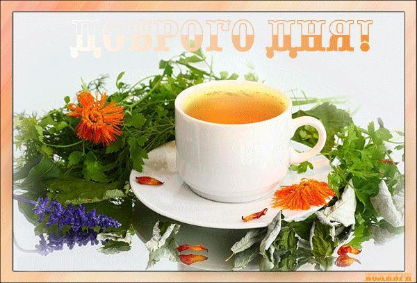 чай добрый день купить