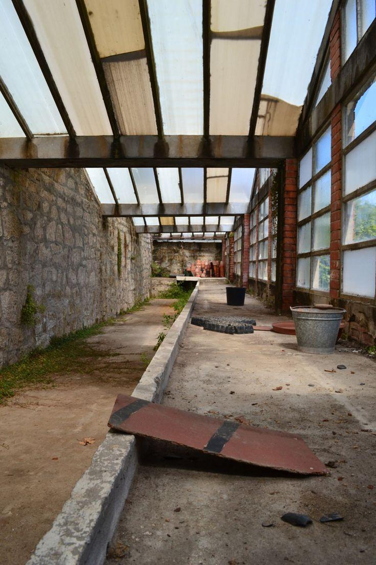 #Photograph #Greenhouse in #Oporto - #Portugal by Chiara Villata on #500px