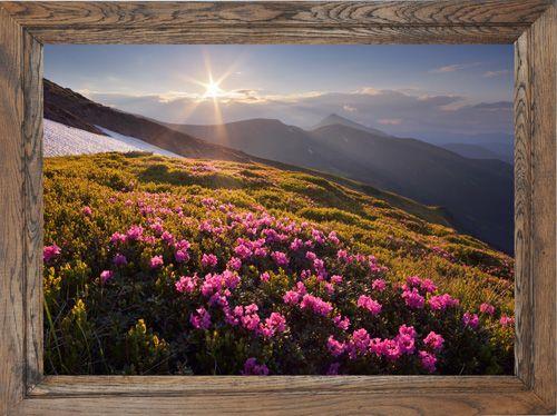 #Obraz #rama #dębowa 50x70 KRAJOBRAZ DUZY RAMY RAKBIS (5150691367) - Allegro.pl - Więcej niż aukcje.