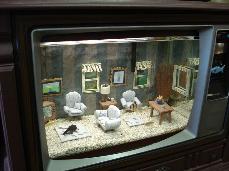 Fish tank living room made out of an old tv set fish for Can you put a tv in the bathroom